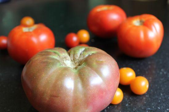 easy tomato gazpacho