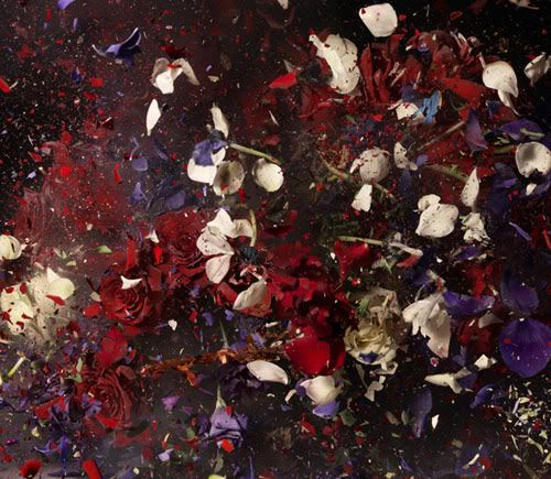 exploded flowers