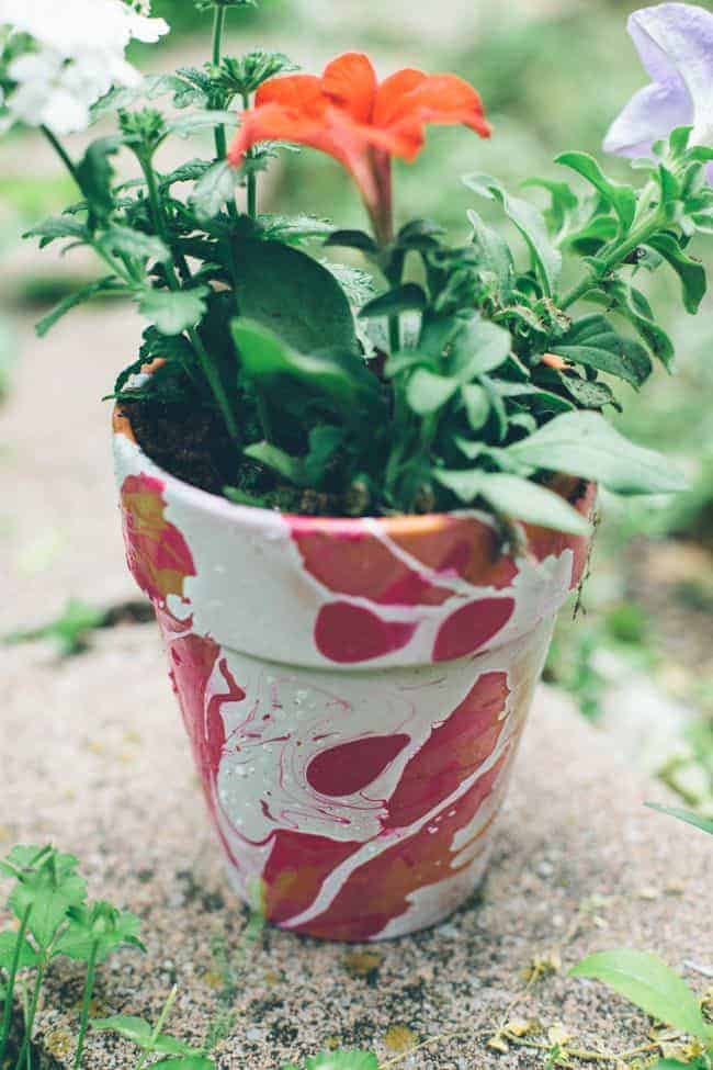 Nail Polish Marbled DIY Planters | HelloGlow.co