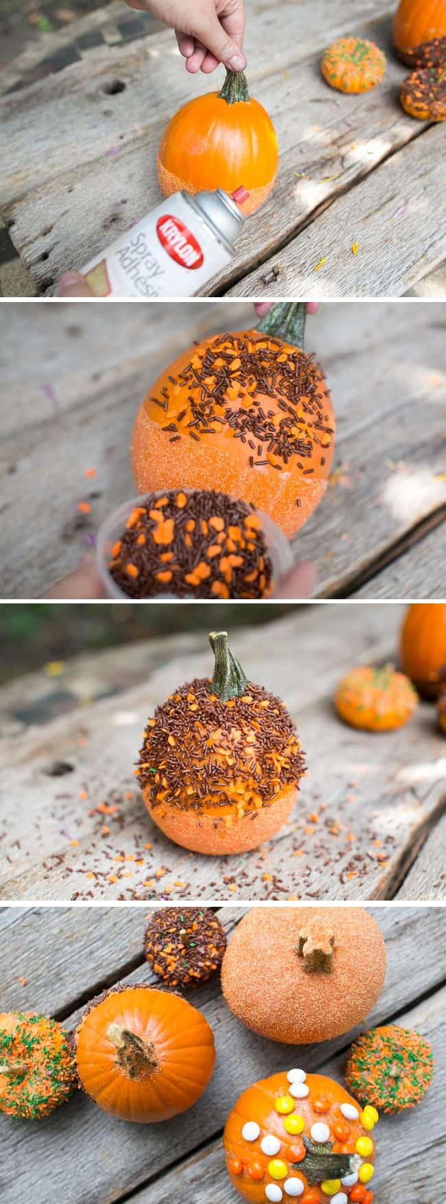 DIY Sprinkle Dipped Pumpkins