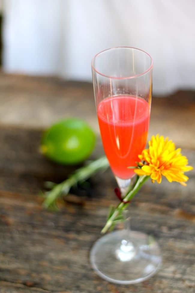 Vodka Blush Cocktail | Henry Happened