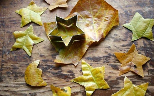 DIY Leaf Stars