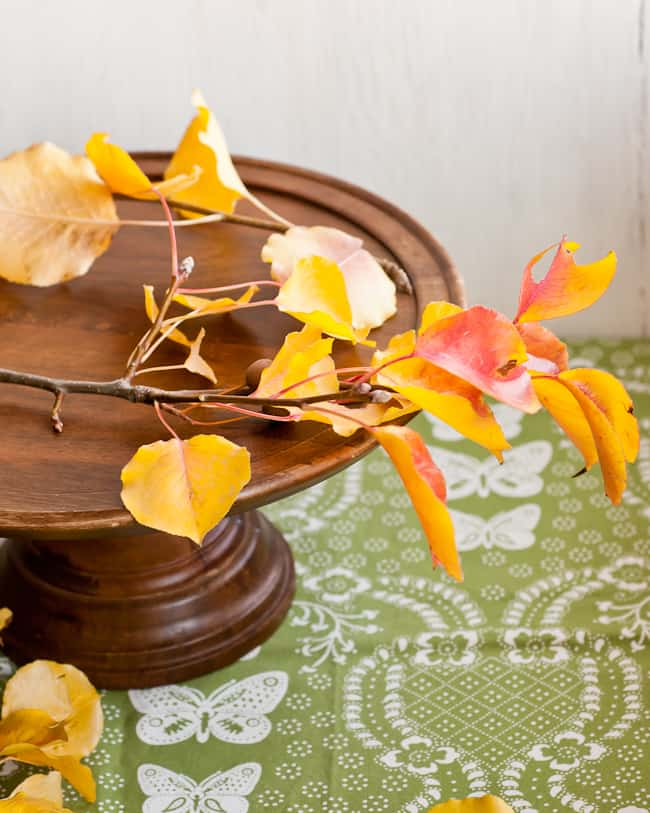 thanksgiving centerpiece - start arranging leaves on stand
