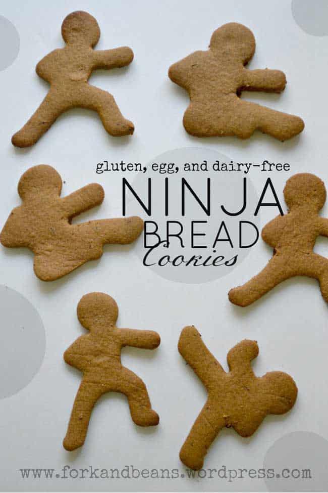 Vegan Ninjabread Cookies