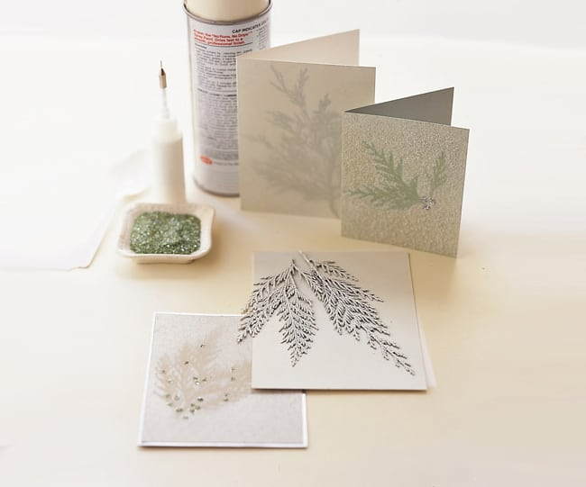 diy holiday cards evergreen cards