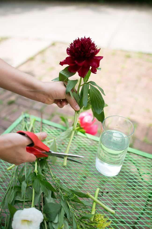 10 Tips To Make Flowers Last Longer Hello Glow