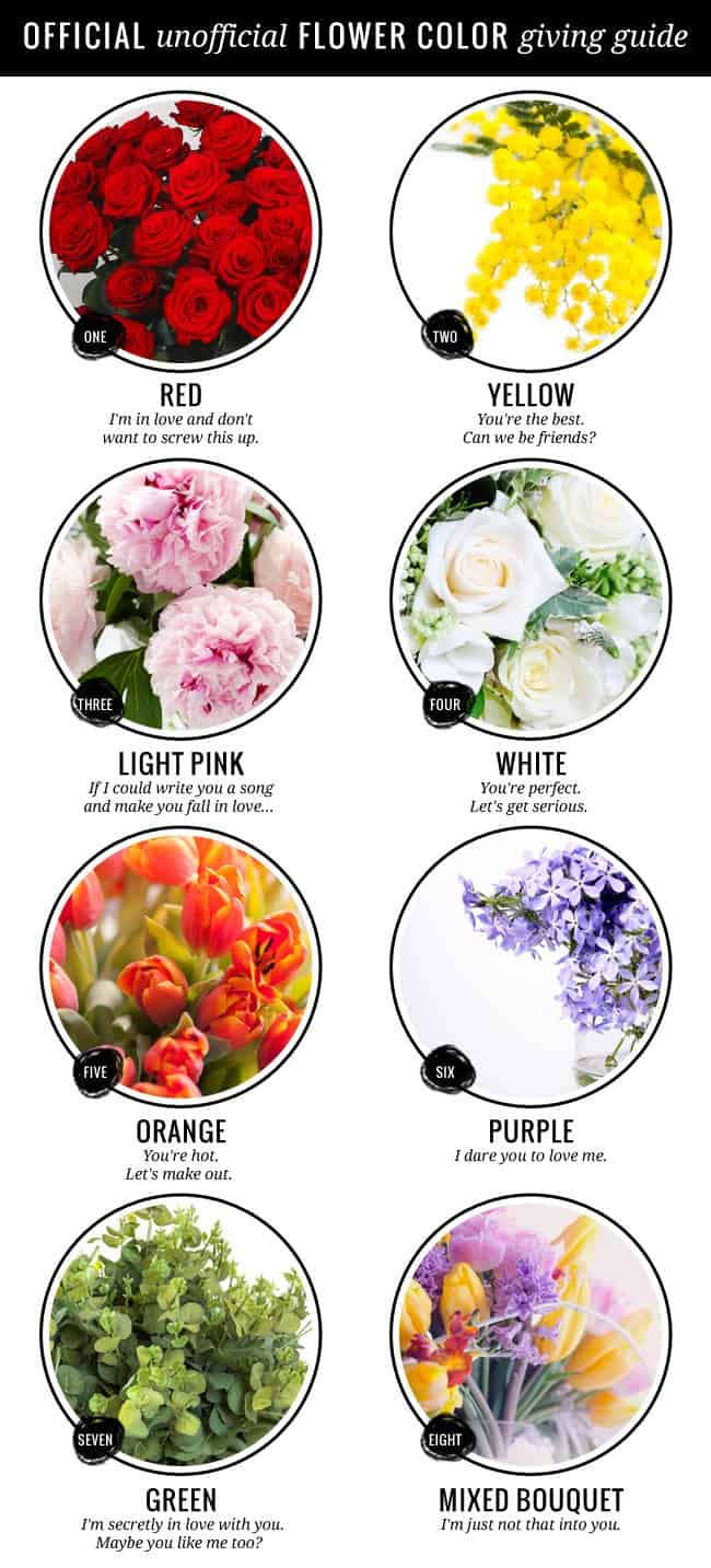 Flower color giving guide + 10 tips to make flowers last longer - Hello Glow