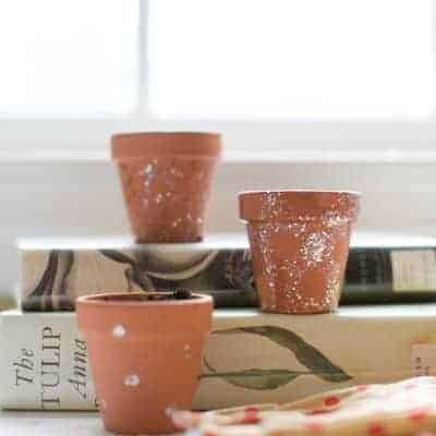 Nail Polish Mini Planters | Henry Happened