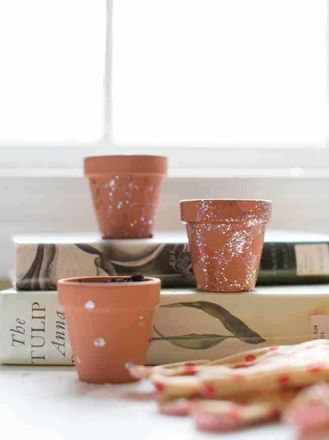 Nail Polish Mini Planters | Hello Glow
