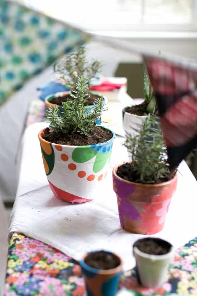DIY Fabric Covered Planters + A Beauty Herb Garden with Boden - Hello Glow
