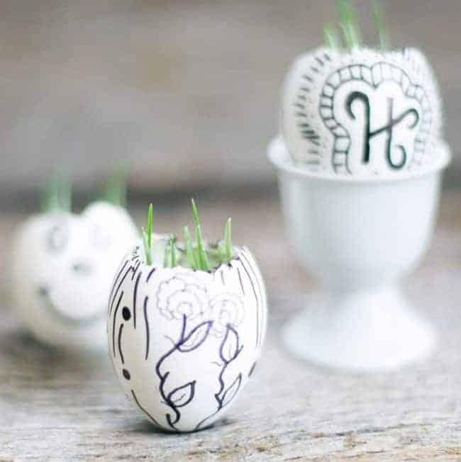 Eggshell garden + Candles