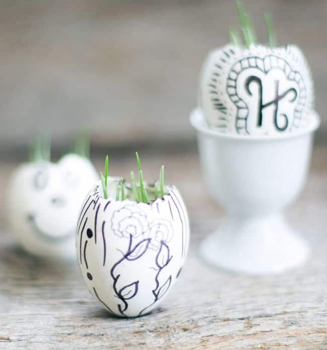 DIY Eggshell Garden | Henry Happened