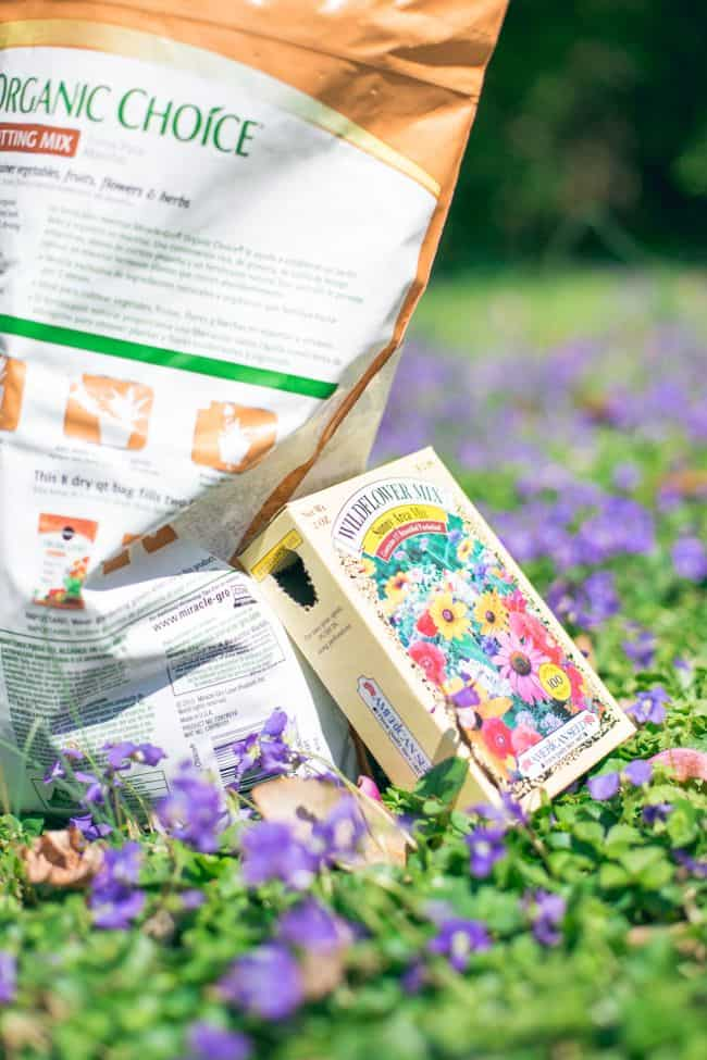 DIY Wildflower Seed Bombs HelloGlowco