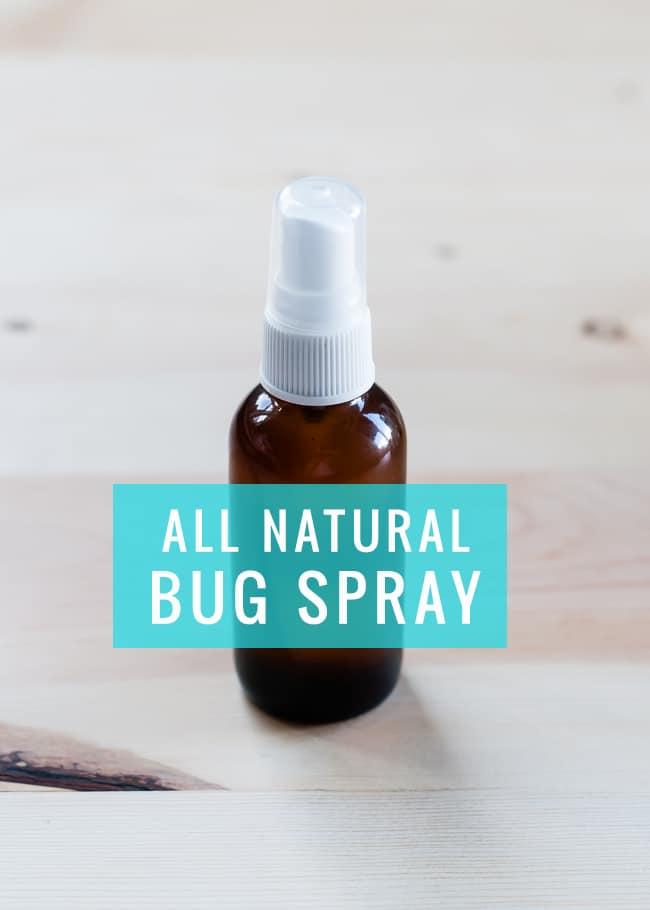 DIY All Natural Bug Spray | Henry Happened