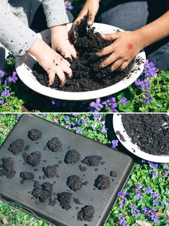 DIY Wildflower Seed Bombs - Henry Happened