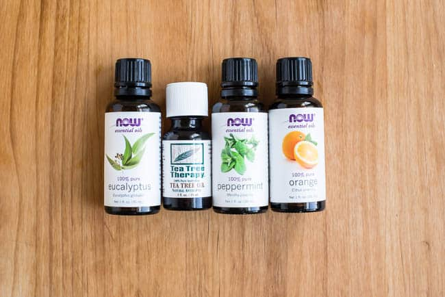 Essential Oils for Household Pests | Henry Happened
