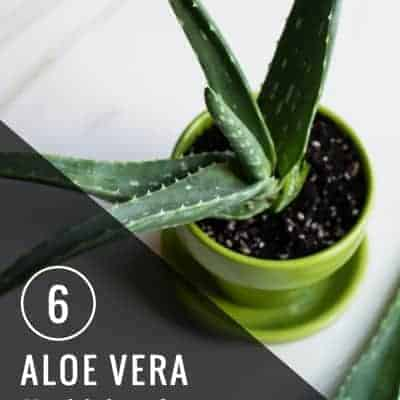 6 Aloe Vera Health Benefits You Probably Didn't Know About | Henry Happened