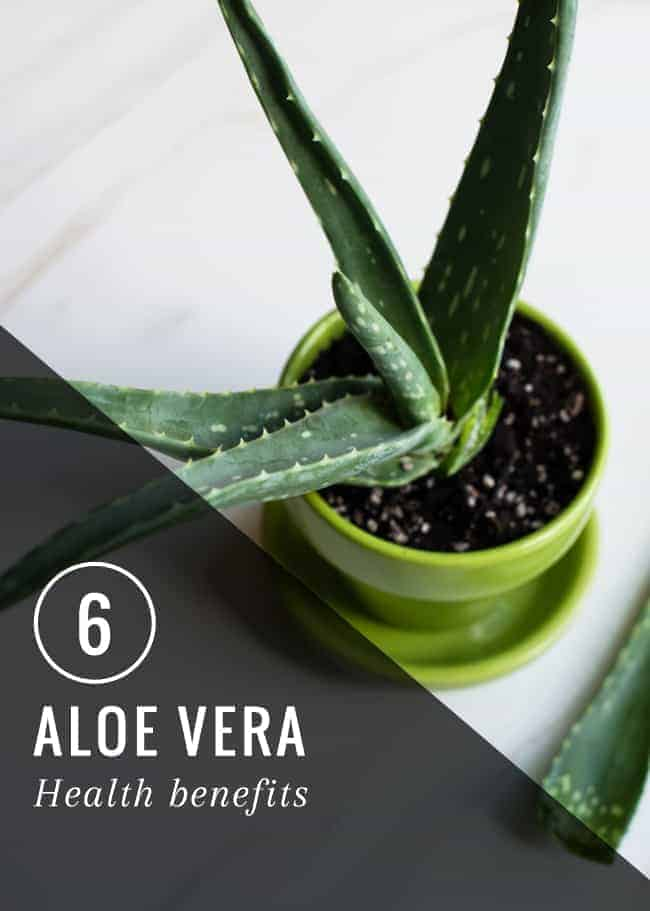 6 Aloe Vera Health Benefits