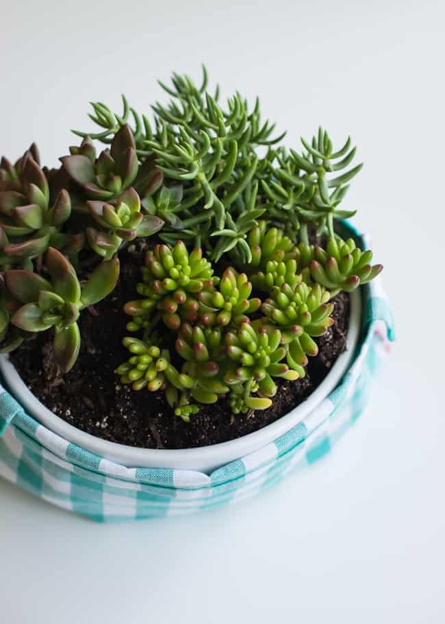 DIY Napkin Basket | Hello Glow