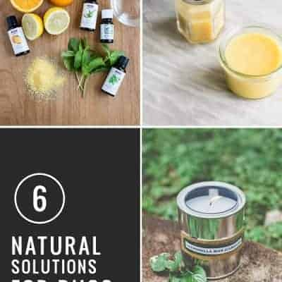 6 Natural Bug Solutions | Henry Happened