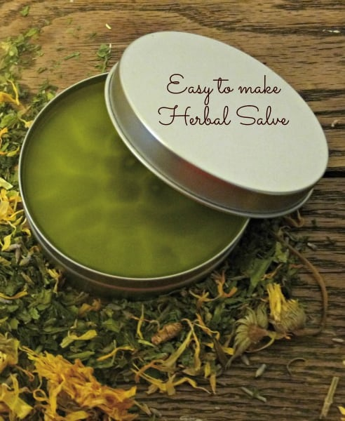 Easy to make herbal salve