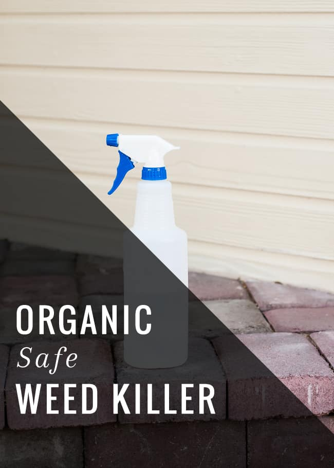 Natural Weed Killer (Organic and Safe!) | HelloGlow.co