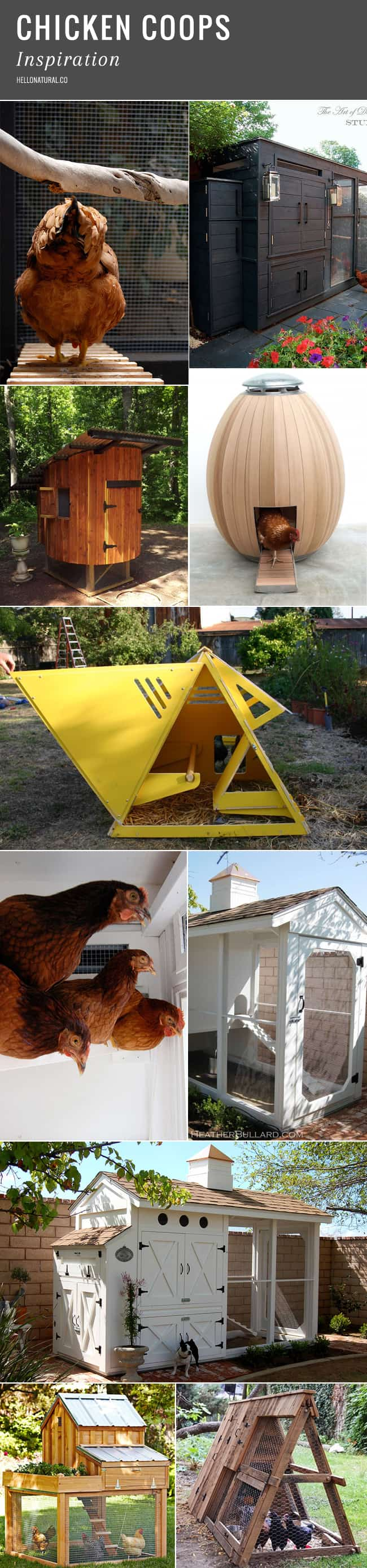 Backyard Chicken Coop Designs | HelloGlow.co