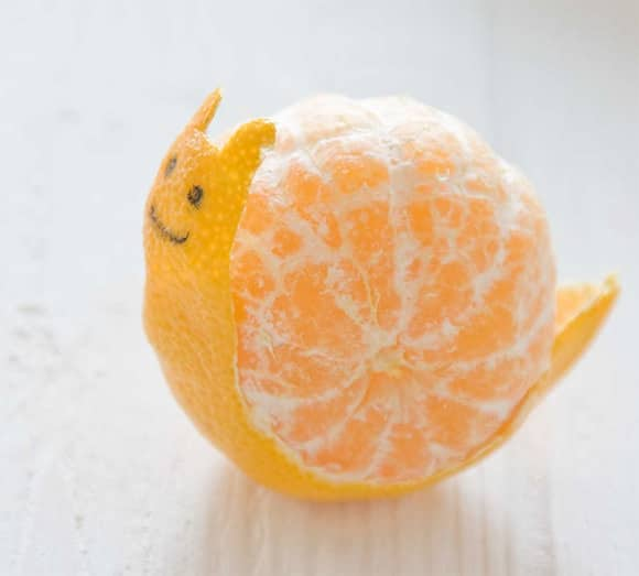A Snail Named Clementine