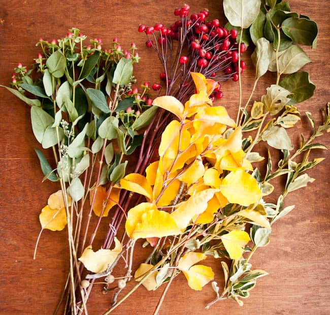 Natural Thanksgiving Centerpiece | Hello Glow