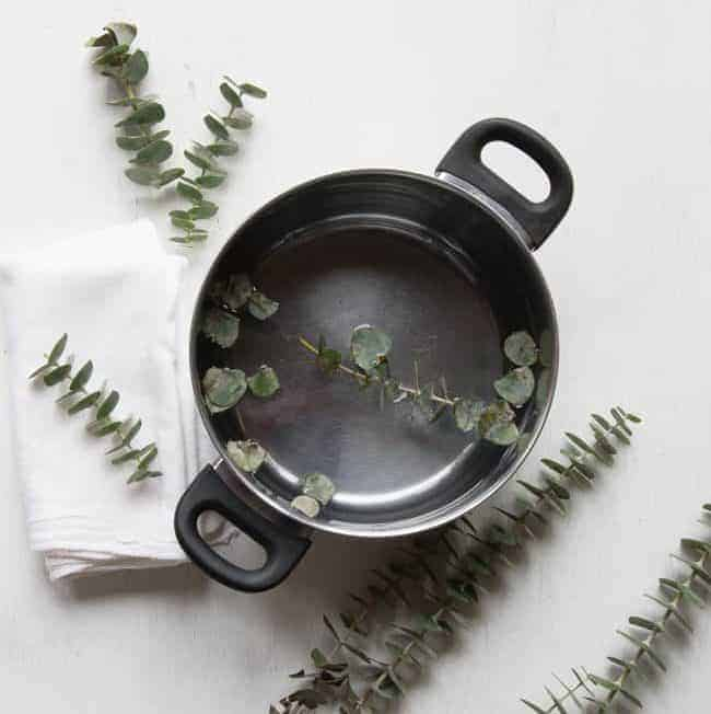 Natural Remedy Get Well Kit + DIY Eucalyptus Steam | HelloGlow.co