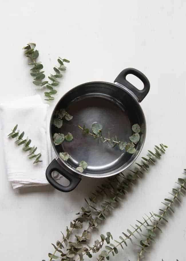 DIY Eucalyptus Steam | 6 Homemade Cold + Flu Fighting Recipes