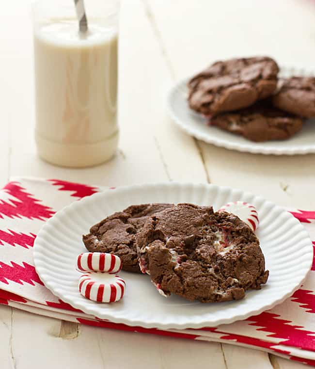 chewy_chocolate_candy_cane_cookies_feature.jpg