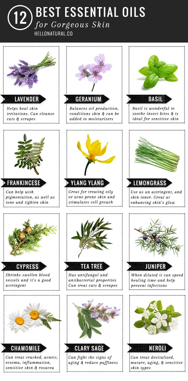 guide-to-oils