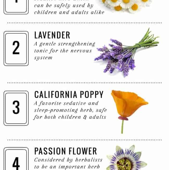 5 Best Herbs for Insomnia