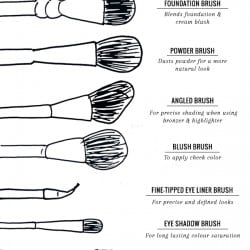 9 Makeup Brushes Every Girl Needs