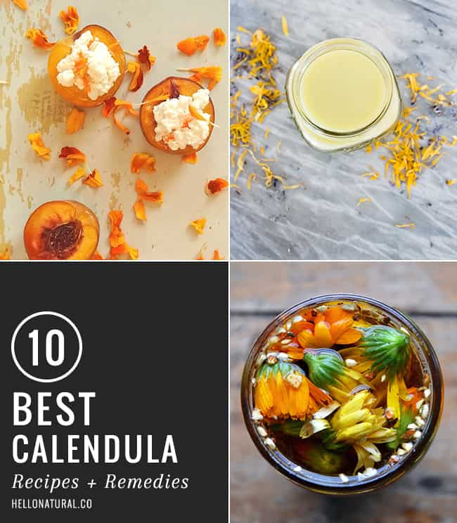 10 Best Calendula Recipes + Remedies