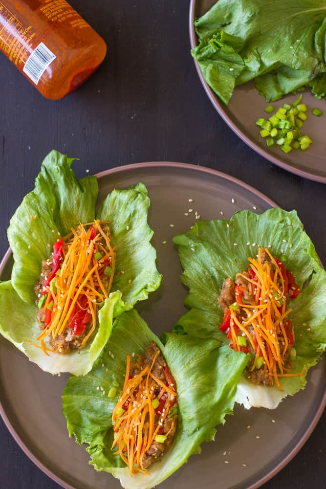 Vegan Asian Lettuce Wraps