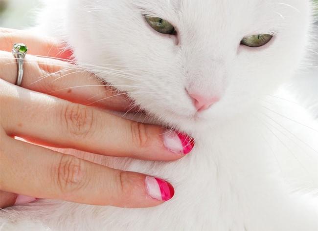 Pink Stripe Nails   13 Ways to Wear Pink Nails