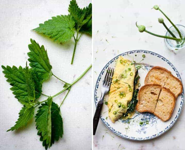 Healthy Spring Brunch Recipe: Nettle Omelet with Scallions + Parmesan