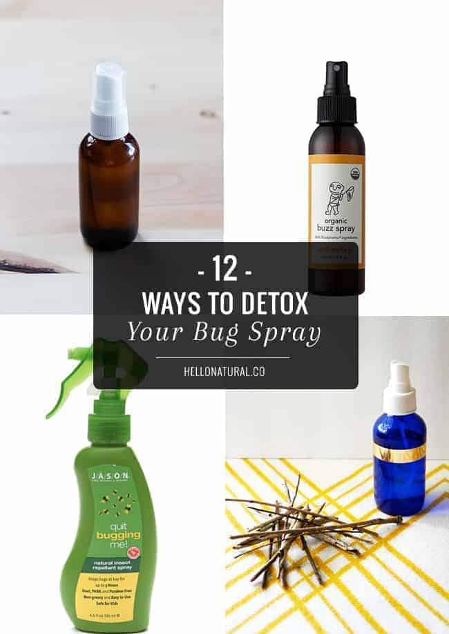 12 Best Natural Bug Sprays