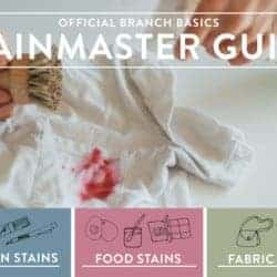 No-Fail Stainmaster Guide: How to Treat Any Stain Quickly and Easily