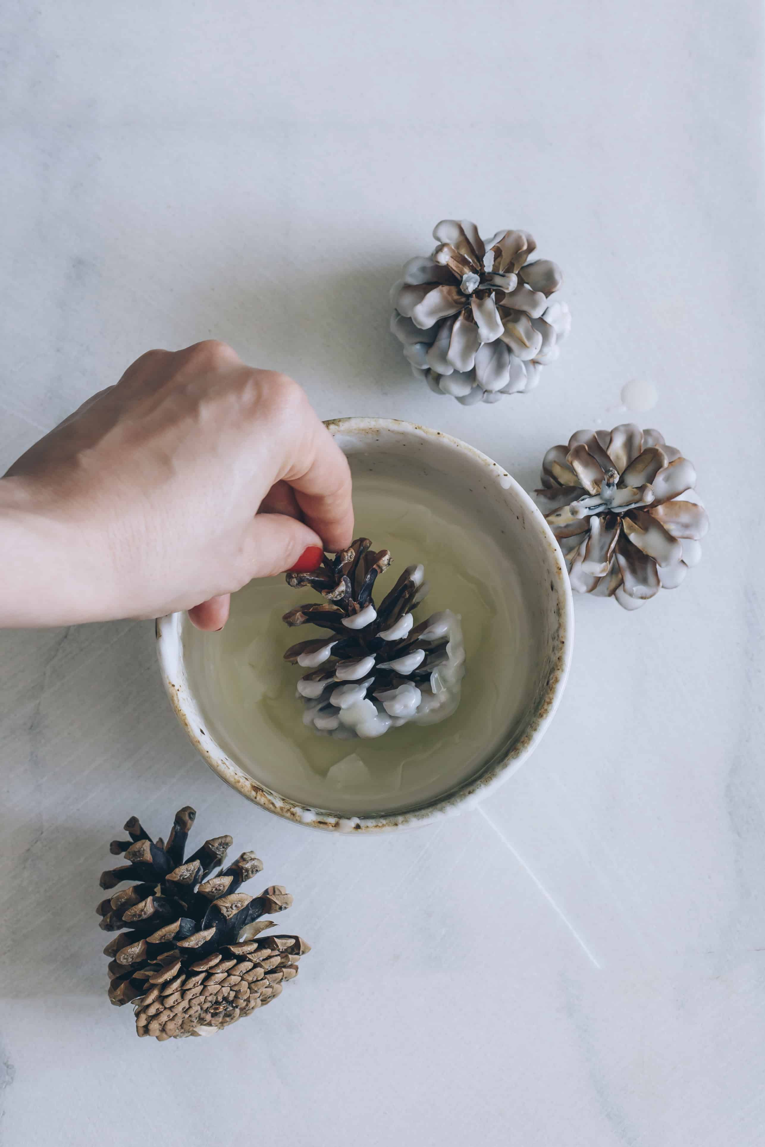 Wax Dipped Pinecone Fire Starter