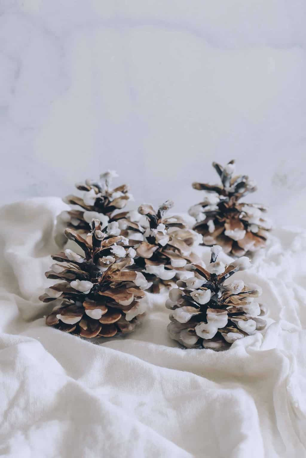 Make Your Own Wax Dipped Cinnamon Pinecone Firestarters Hello Glow