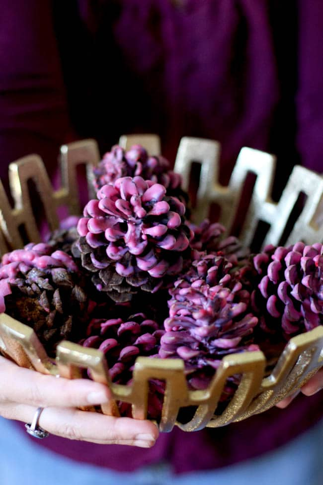 Cinnamon Dipped Pinecones