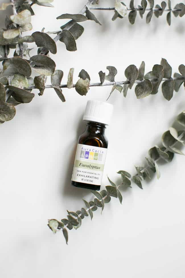Eucalyptus Essential Oil | 5 Best Essential Oils for Everyday Use