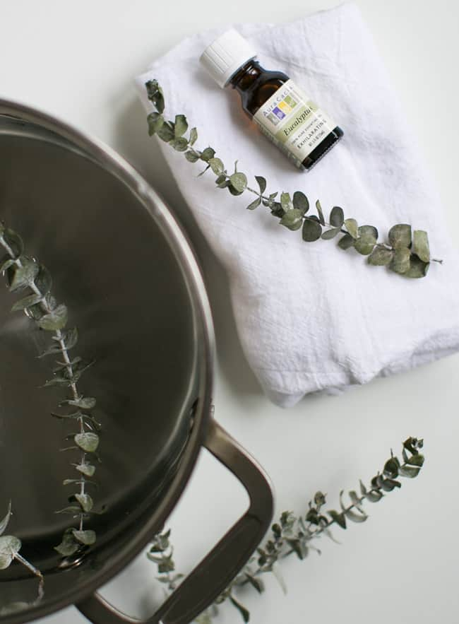6 Everyday Uses for Eucalyptus Oil