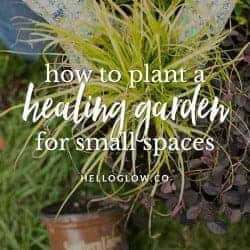 5 Tips for Planting a Healing Container Garden