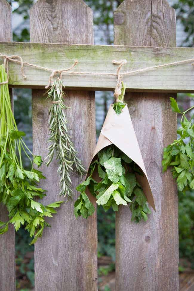 A-Simple-Guide-To-Drying-Your-Herbs-7