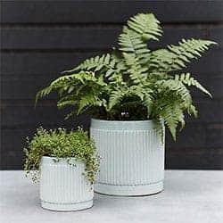 Clay Stripe Cylinder Pot