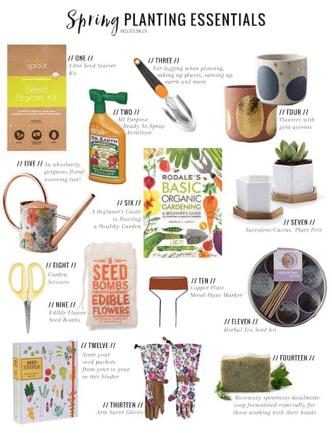 Get Your Garden Growing With These Spring Planting Essentials